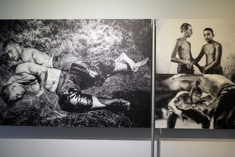 World Press Photo 2019 w Opolu